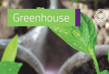 Greenhouse pre-inkubációs program
